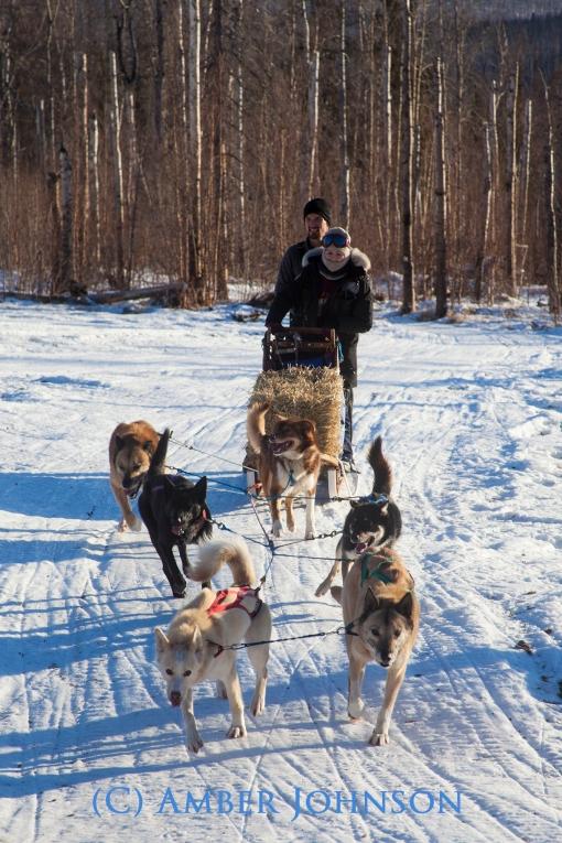 deke lorraine on dogsled