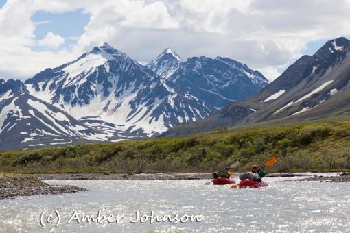 kasey ryan paddle