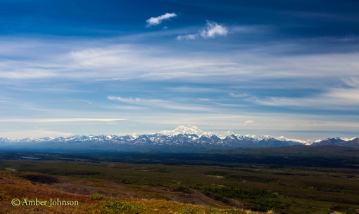 denali view beginning
